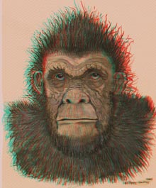 Bigfoot anaglyphe relief 3D